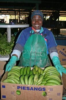 Banana packing