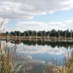Farm dam Mpumalanga 2