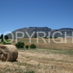 Hay-bales-Gydopass-1